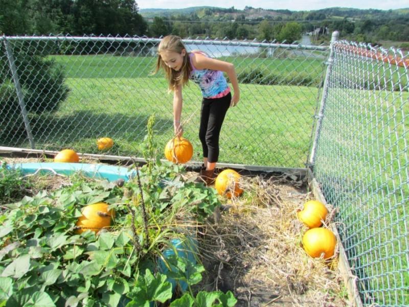Brookeside Student Garden - Brookeside Montessori School in ...