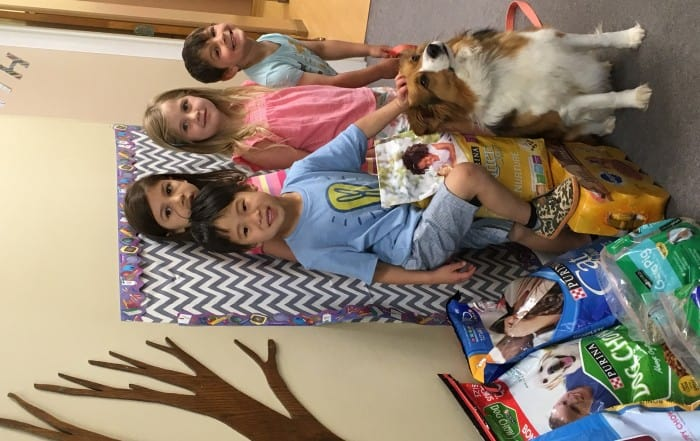 Cat and Dog Treats Fundraiser to benefit the Montgomery County SPCA in Perkiomenville