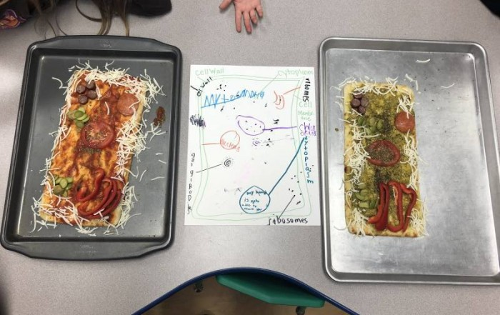 Elementary Unit on Plant Cells - Plant Cell Pizza