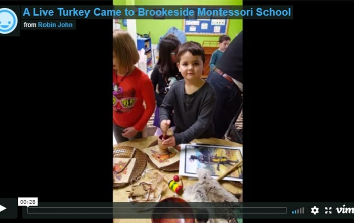 Turkey and Pilgrim Visit Brookeside Montessori School