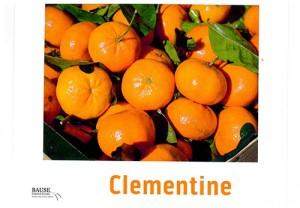 Clementine Oranges - This Week's Healthy Snack