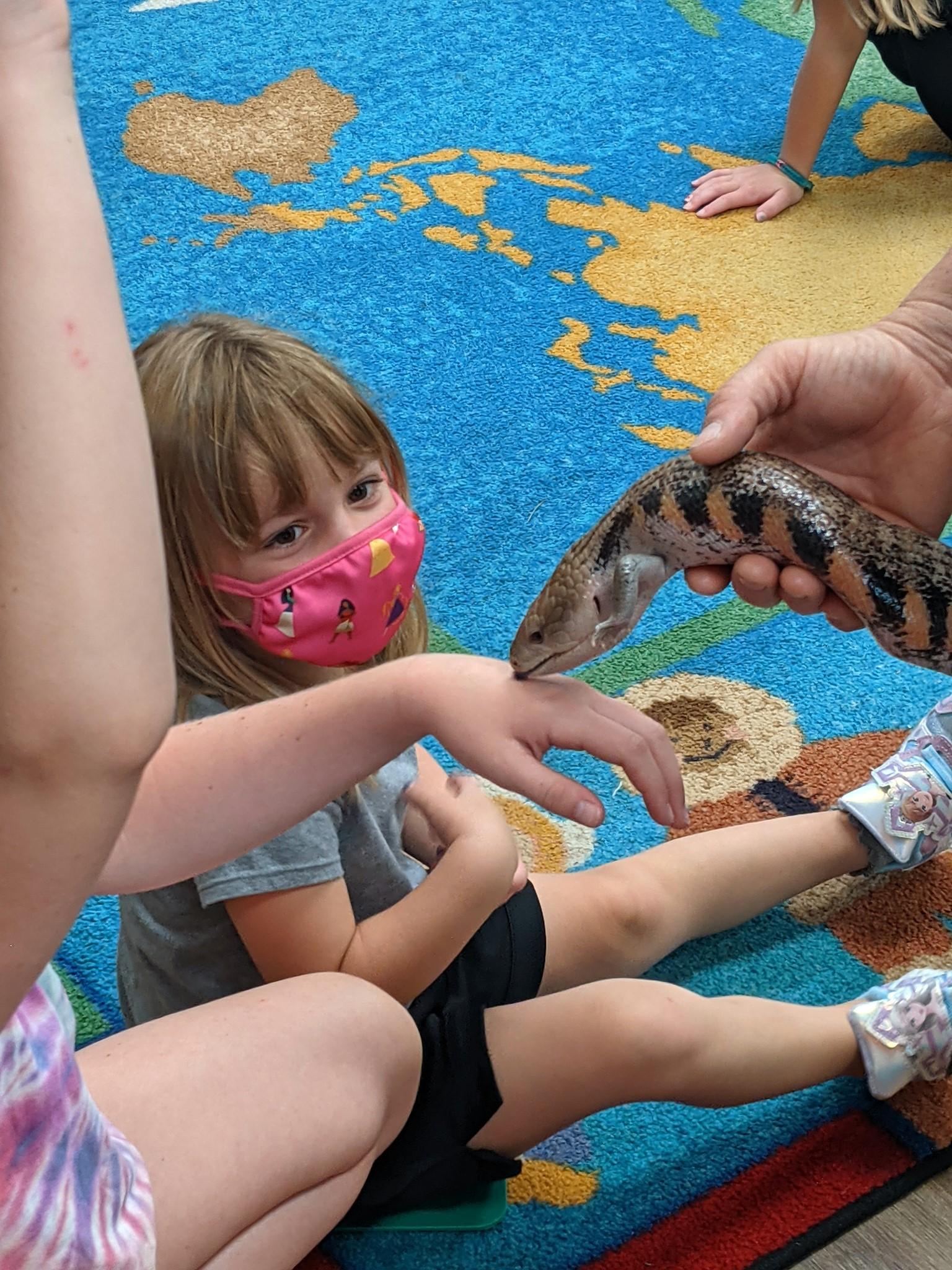 Party Animal Express Visit to Brookeside - 9
